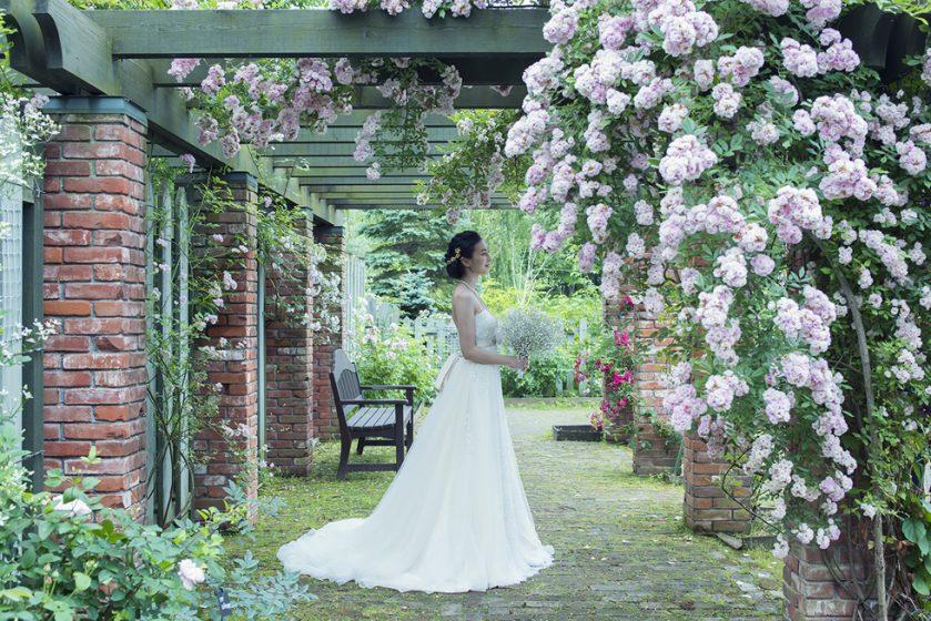 札幌の人気結婚式場|ノーザンホースパーク|C