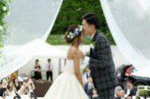 札幌の人気結婚式場|the Terrace|テラス|n