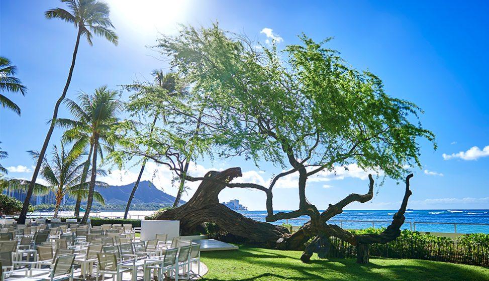 人気リゾート結婚式 ハウテラス・ウエディング・アット・ハレクラニ G