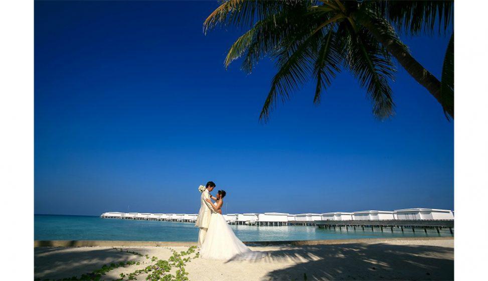人気リゾート結婚式|アミラフシ|J
