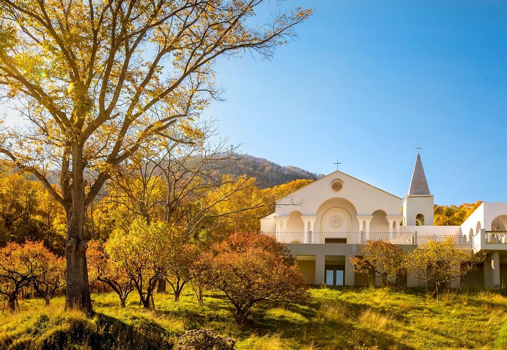 ローズガーデンクライスト教会|伏見|教会式|札幌|結婚式|札幌コンシェル
