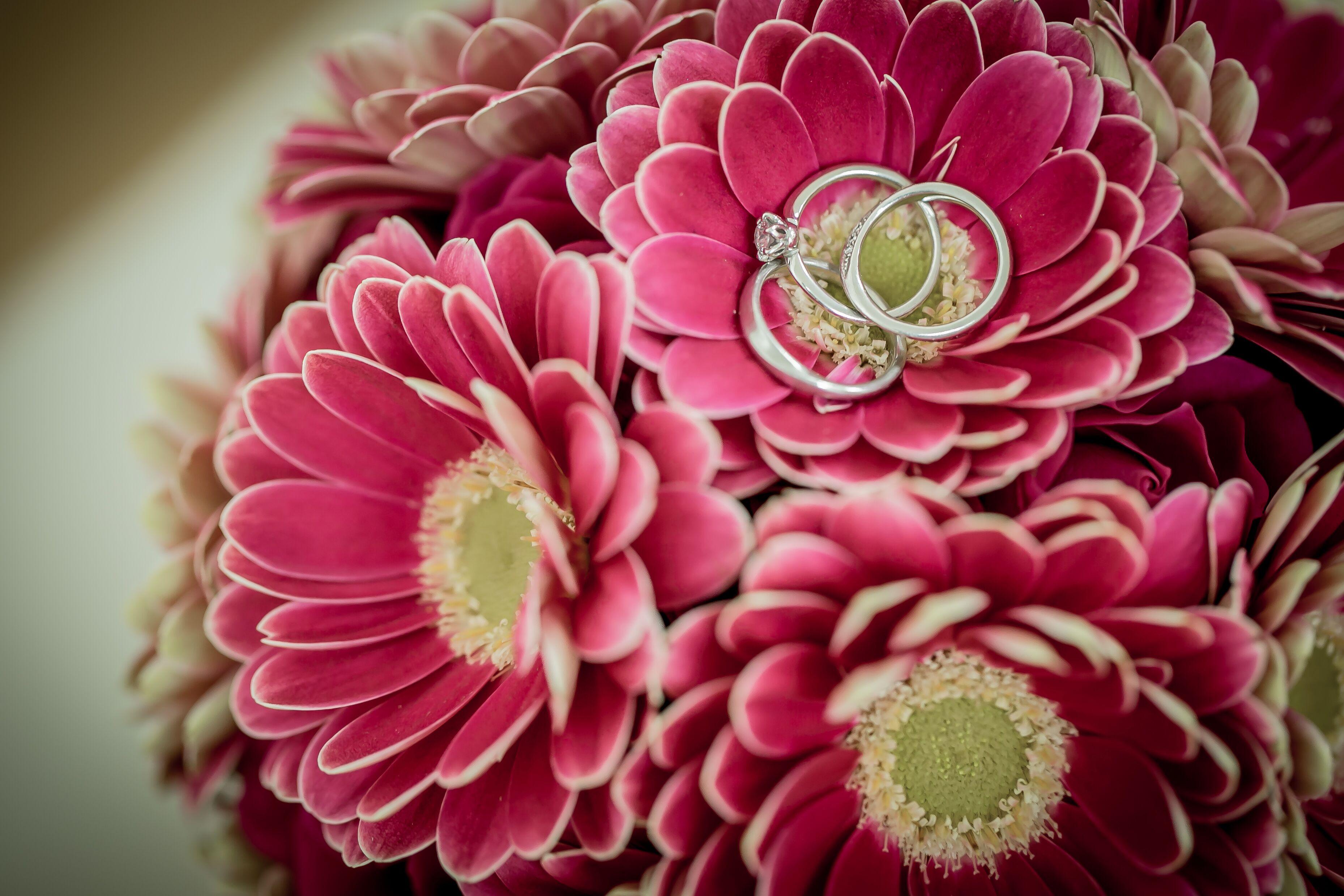 指輪|マーガレット|結婚式