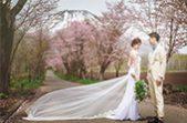 札幌の人気結婚式場|ニセコパノラマ|N