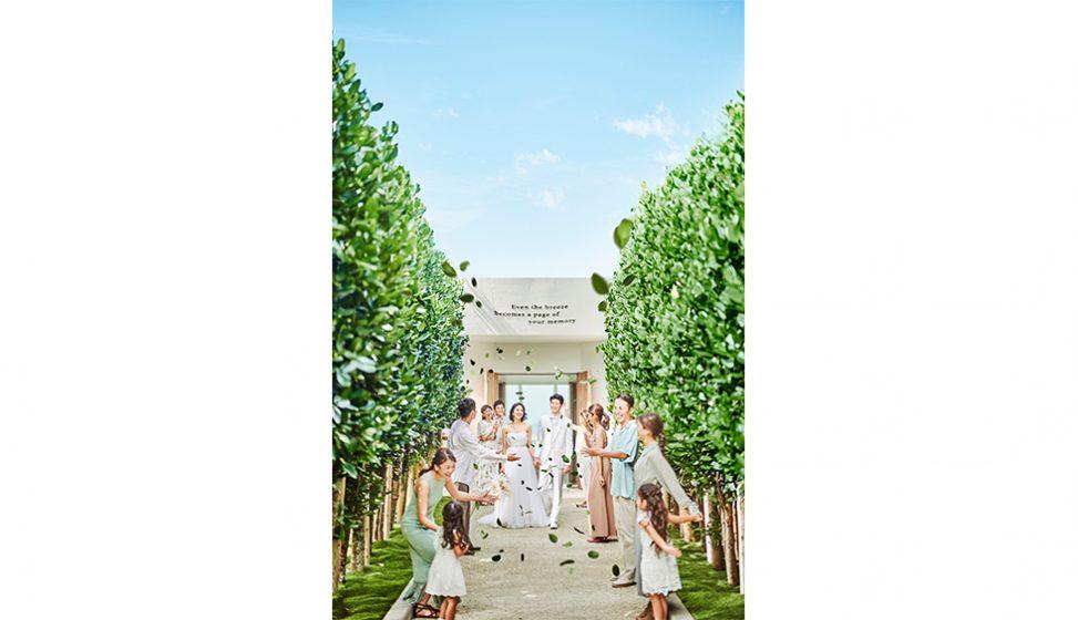 人気リゾート結婚式|白の教会|D